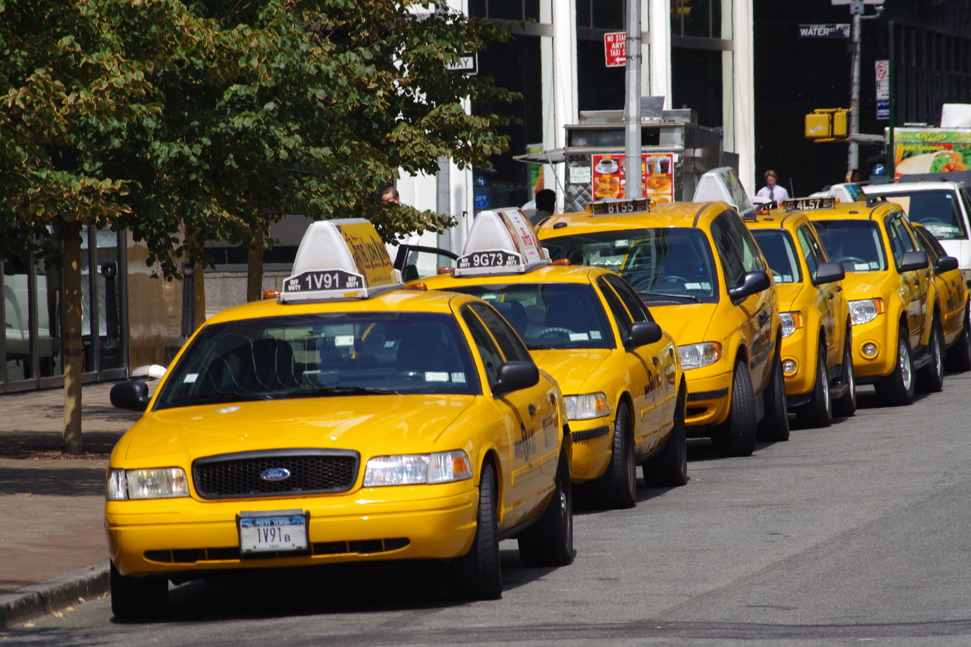 Car Service & Green Cab Insurance | Welcome To Greenline